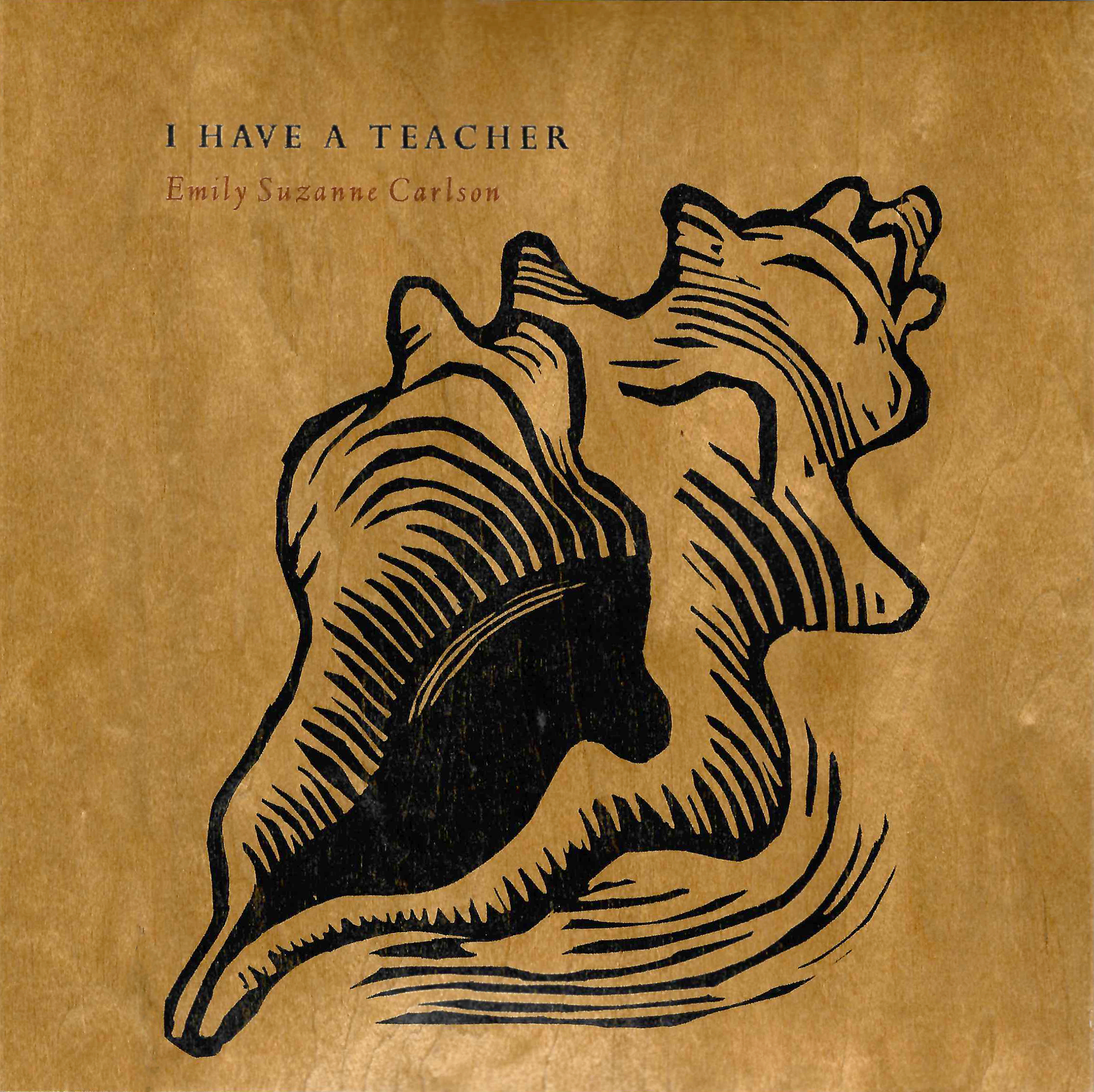 drawing of a seashell on wood book cover