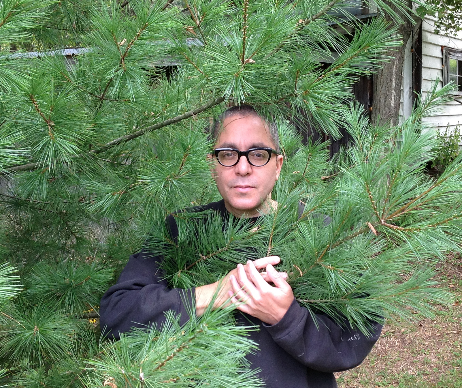 Nicolás peers back at you from behind the branches of a pine tree
