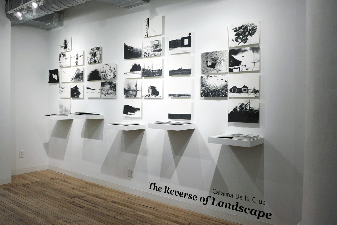 grid of black and white images and books