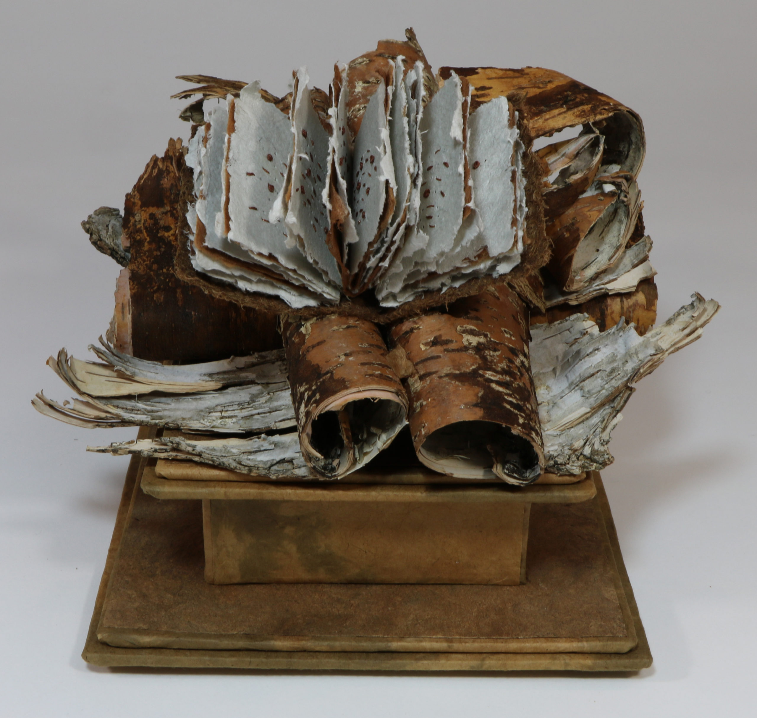 sculptural Book
