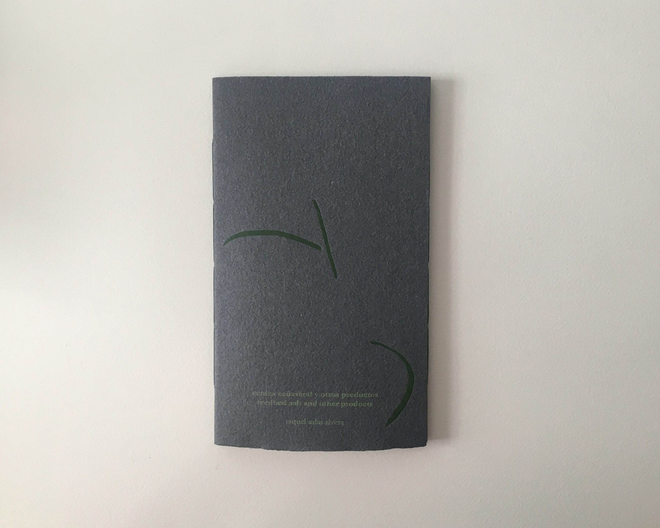 cover of reedbed ash and other products (2020) Raquel Salas Rivera