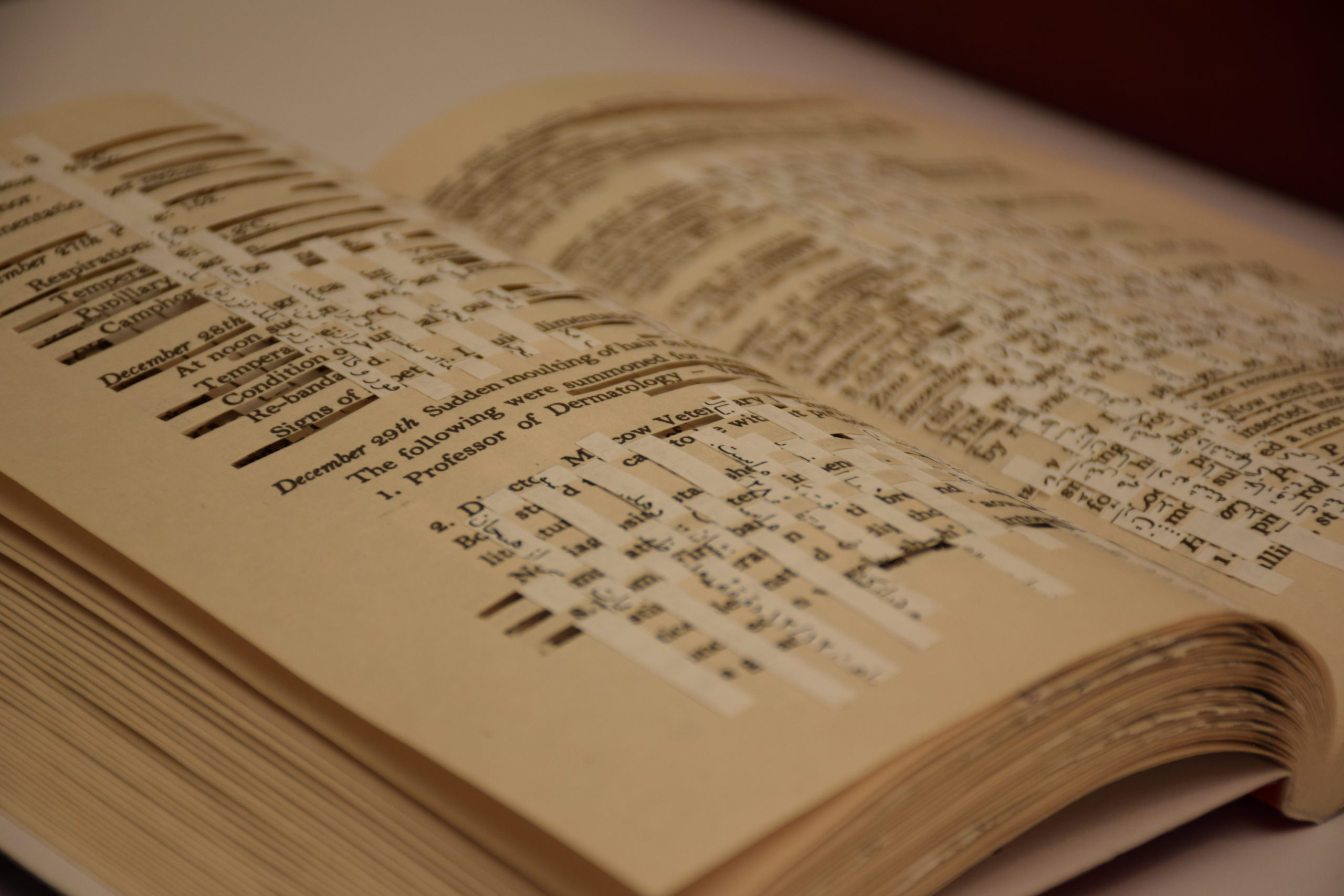 A close up photo of a book with strips of contrasting paper woven through its text