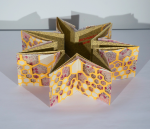 A book by Elizabeth Castaldo. The book is in a star-shaped form and balanced standing up. There are beehive shapes lining the pages.
