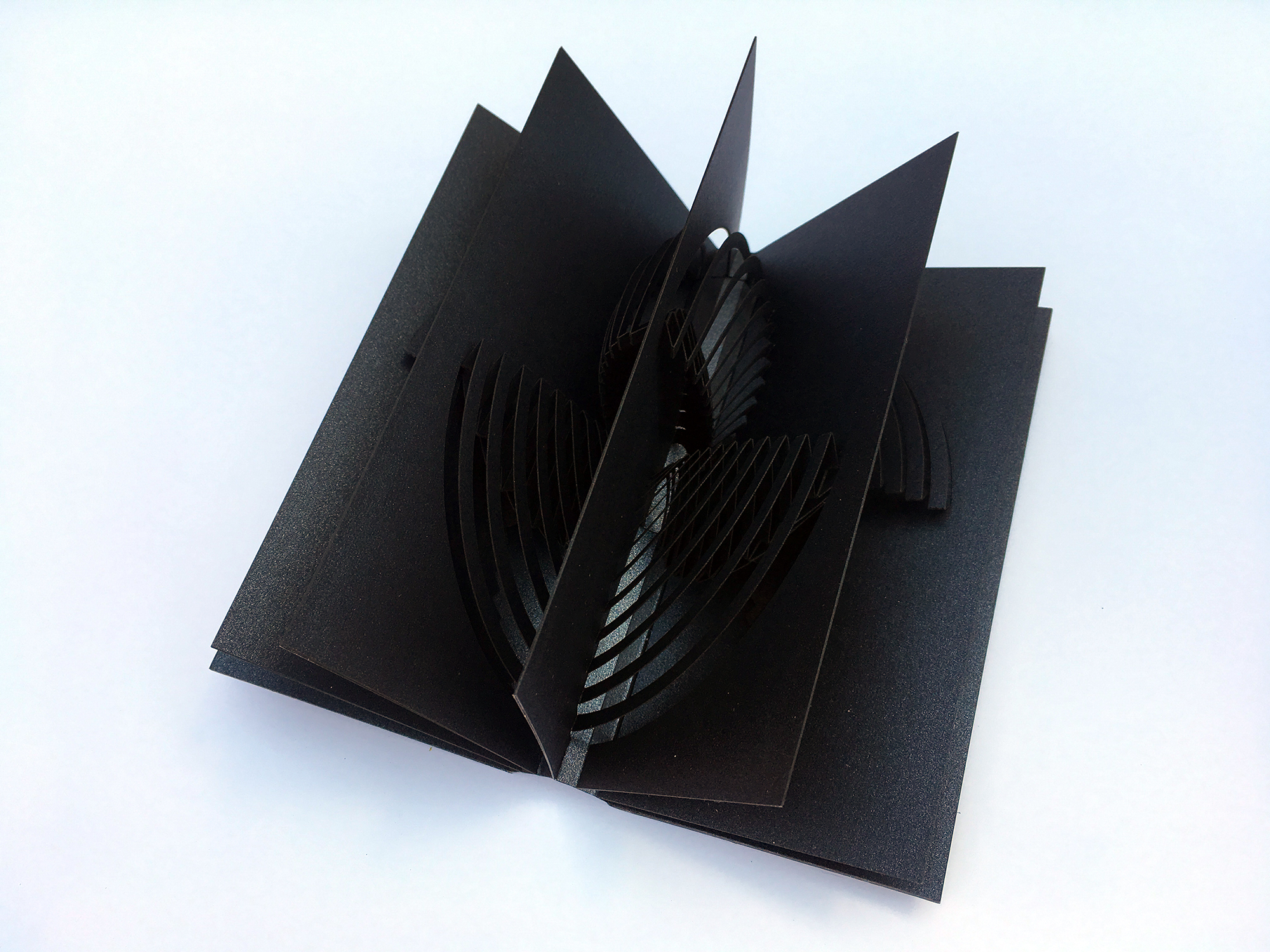 black book with intricate geometric popup