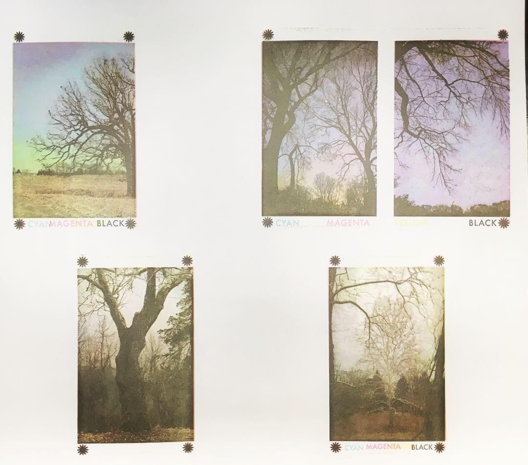 CMYK letterpress prints of trees