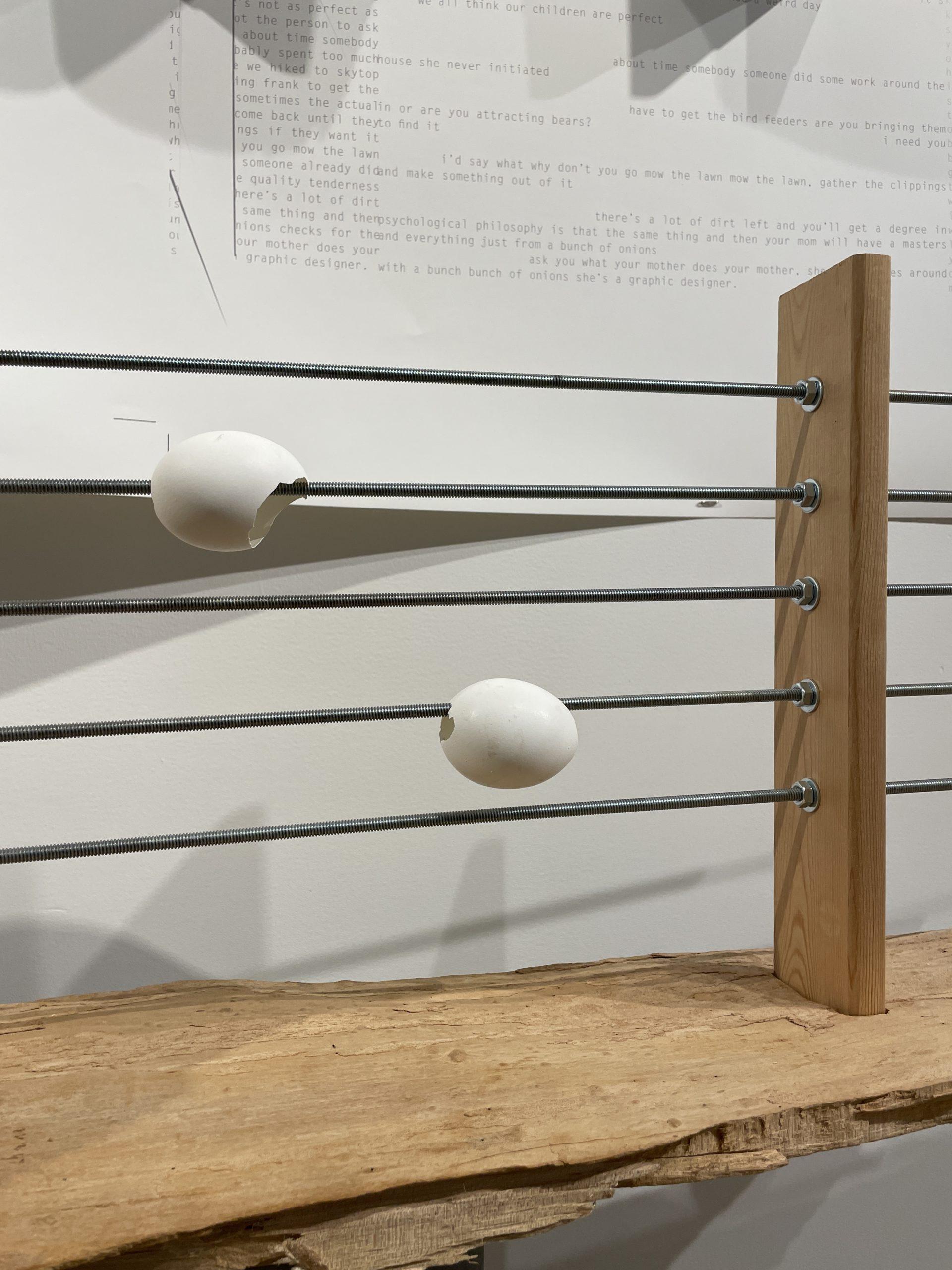 traversing with onions (2015) Sondra Graff