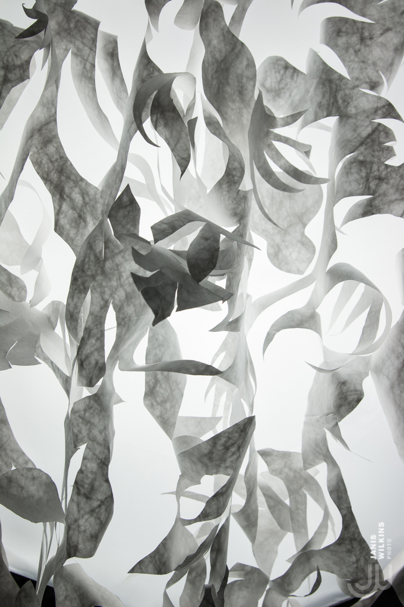 Papercut Vegetable Wall - Beatrice Coron