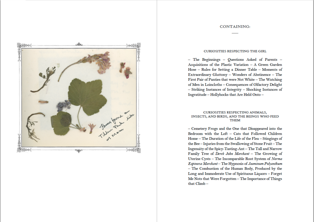 Two-page spread of pressed plants found in Tilden Park and a curious table of contents