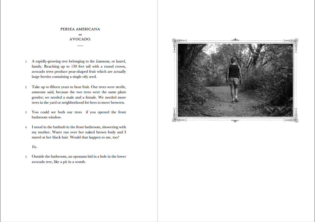 Two-page spread of an entry about avocados and a black and white photograph of a woman hiking away from the camera